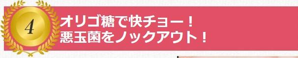 オリゴ糖.jpg