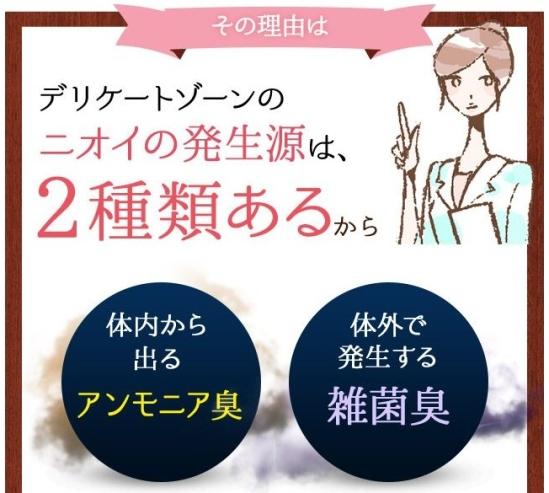 2種類.jpg